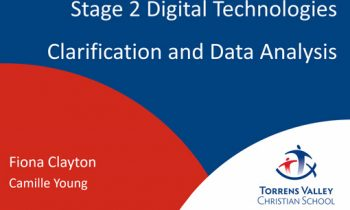 Stage 2 Digital Technologies Clarification and Data Analysis